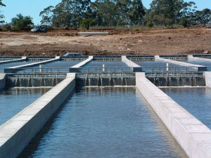 Black River Caviar's aquaculture facility in Uruguay